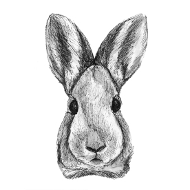 Rabbit. Pen and Ink, Copic Marker