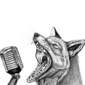 Fox with a Microphone