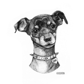 Pet Portrait Commission