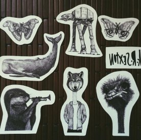 Sticker Designs